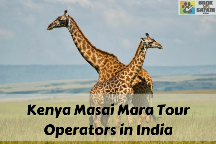 Kenya Masai Mara Tour Operators in India