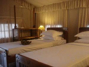 Nagzira Hotels and resorts