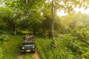 Ranthambore Wildlife Safari with Mumbai Travellers