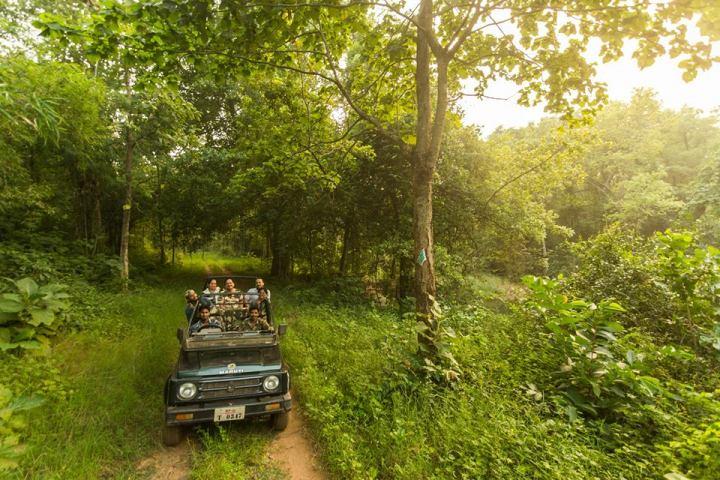 Safari Booking at Umred Karhandla Wildlife Sanctaury