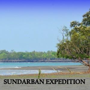 sundarban mangrove tiger expeditions