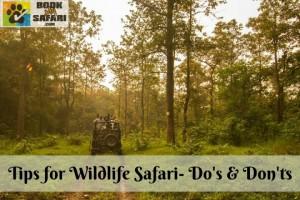 Tips for Wildlife Safari- Do's & Don'ts