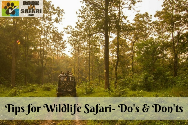 Tips for Wildlife Safari- Do's & Don'ts
