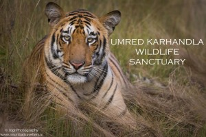 umred karhandla wildlife sanctuary main