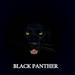 black panther expeditions