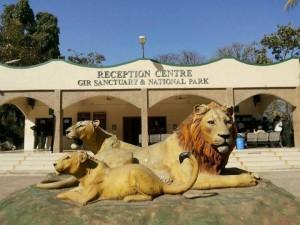 gir national park safari gates