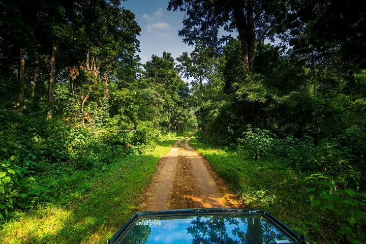 pench national park safari bookings