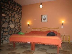 sawai madhopur hotel and resorts