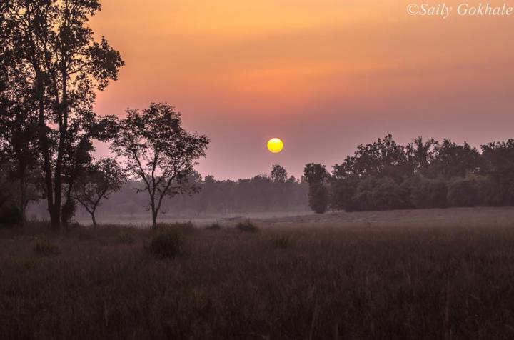 bandhavgarh-safari-and-gates