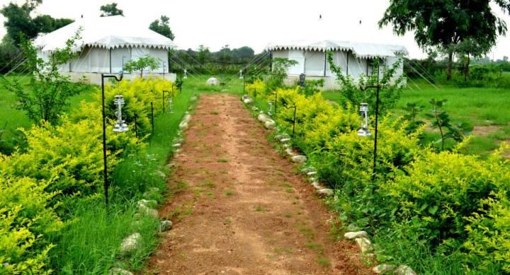 hotels-and-resorts-at-bera-jawai-bandh
