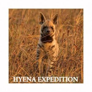 hyena expedition