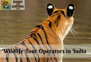 Wildlife Tour Operators in India
